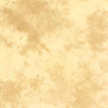Medžiaginis Fonas Lastolite 3x3 5m Arizona